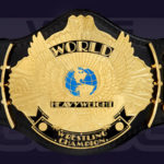 WWF World Heavywieght Championship